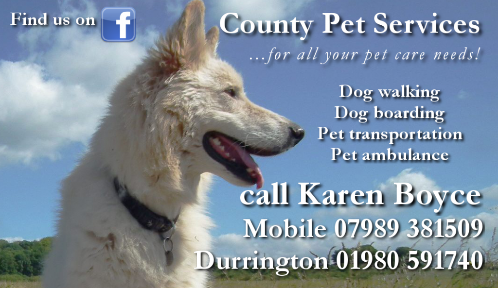 County Pet Services