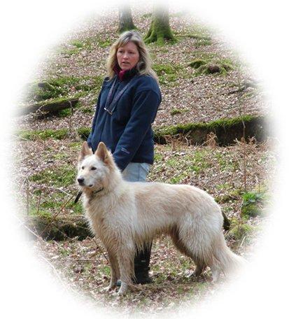 White German Shepherd dog walking